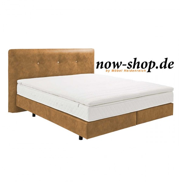 now by h lsta boxspring bett champagnerbraun betten. Black Bedroom Furniture Sets. Home Design Ideas